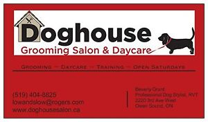 Pet Grooming & Doggie Daycare NOW OPEN