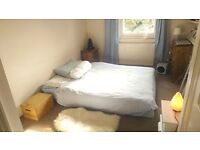 Sunny room in Chalk Farm/Primrose Hill available for 4 weeks 6th March- 3rd April