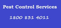 Call +1800 831 4011 pest control services