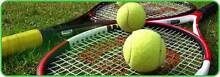 Tennis partner for a regular hit!! St Leonards Willoughby Area Preview