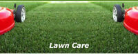 Yard Clean Up & Lawn Maintenance + Strong mover