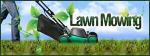 Lawn mower avalible for jobs Rockdale Rockdale Area Preview