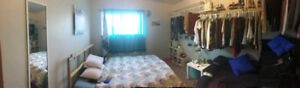 Clean room for rent. $600/month. Close to UofG/downtown