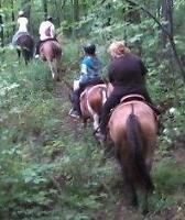 Trail Ride Special-Gift certificates available