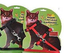 Nylon Cat Harness and Lead Small Homebush West Strathfield Area Preview