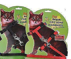 Nylon Cat Harness and Lead 2x Sydney City Inner Sydney Preview