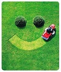 Domestic-Industrial lawn Mowing service Kings Langley Blacktown Area Preview