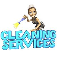 Dedicated Cleaning lady