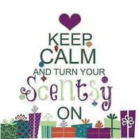 Scentsy where it just makes sense