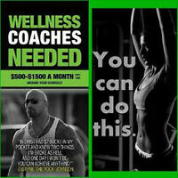 Health Coaches Needed!