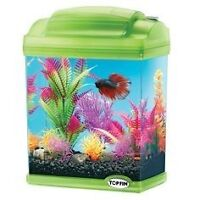 Grreat Choice 1.2 gallon fish tank