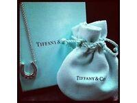 Tiffany & Co Silver Horseshoe Pendant - Horse