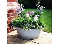 Vintage Shabby Chic Tin Bath Planter - Large