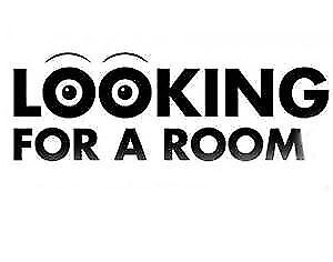 Looking for room to rent ASAP