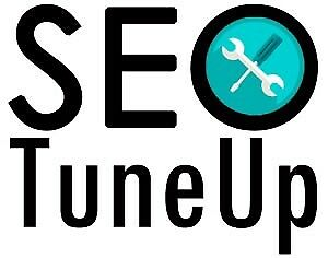Website Business Booster  -  SEO Tune Up
