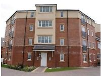 Apartment to rent in the Popular St James Village, Gateshead, Sanderson Villas