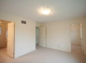 3 Bdrm Mattamy Home, close to 401, available Feb 1st! Cambridge Kitchener Area image 6