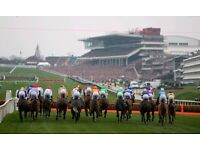 Gold Cup Day - Tatts enclosure tickets for sale