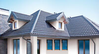 Metal roofing from Europe!