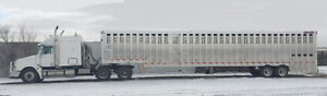 Custom  livestock hauling with 53' Ground load