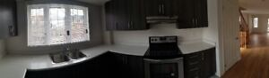 3Br, 3Wr Brand NEW CORNER Townhouse for rent, Oshawa, Vacant