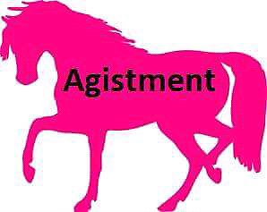 HORSE AGISTMENT/STABLE AVAILABLE Westbrook Toowoomba Surrounds Preview