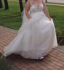 Wedding dress and Vail
