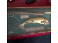 large fishing display.glass case 42in long