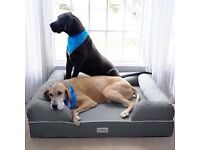 Petfusion dog beds x large and medium/large high end memory foam dog bed/loungers