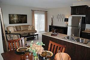 Welcome Home 2 Bedroom + Den Downtown London Ontario image 7