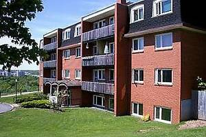 * Bright one bedroom with large balcony and new laminate - Oct!*
