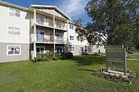 LARGE 1BR H/HW 5 APPLIANCES $875 SENIOR/PROFESSIONAL BUILDING
