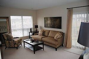 Welcome Home - 1 Bedroom  New Downtown Apartment London Ontario image 5