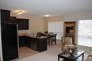 Welcome Home - 1 Bedroom  New Downtown Apartment London Ontario image 7
