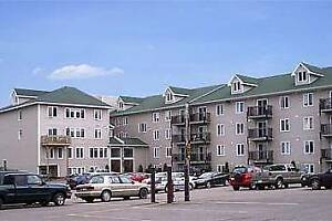 3 BDR, MARCH 1!!GREAT LOCATION!!!  WALKING DISTANCE TO ALL!