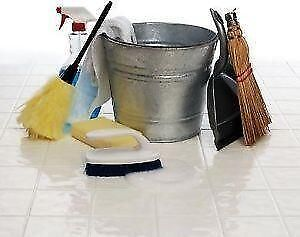 MAID CLEANING OFFERED CALL  MICHELE : 780 381 1306
