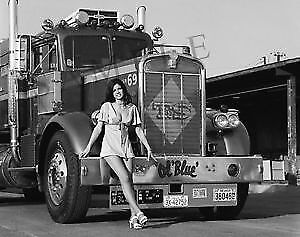 TRUCKING COMPANY WANTED