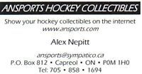 Purchase Domain Name ansports.com and Website www.ansports.com Sudbury Ontario Preview