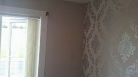 painter & decorator great rates glasgow and surrounding areas call James on 0141 387 5457