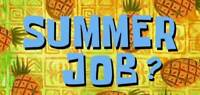 Summer Job- Retail Merchandiser