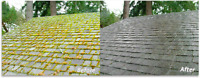 Cheapest moss/gutter cleaning in town free quotes 250-616-9494