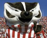 badger201143
