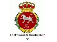 *** Adult Sunday Morning Players Required *** E&K FC