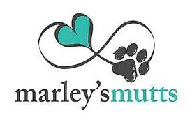 Marley's Mutts Dog Training
