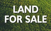 40 Acres Plamondon Area-Consider partial trades/financing
