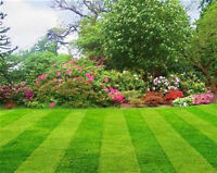 Lawn Care Services (Acreage & Residential)