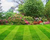 Lawn Care / Grass Cutting / Aeration (Residential & Acreage)
