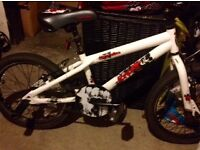 18 inch bike with a bmx style frame