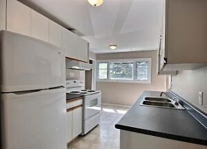 Move-in Ready May 1, 5 BR & 2 BA, 4 Parking, Walk to U of M!