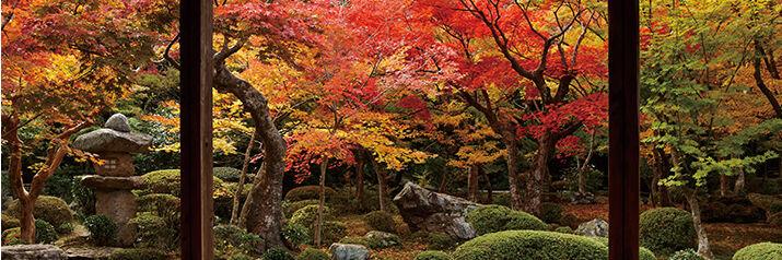 Beautiful_Japan